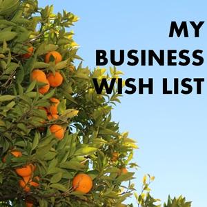 My Business Wish List 2014