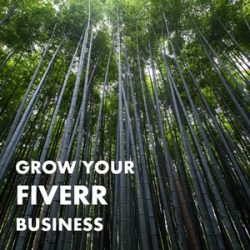 Beyond $5: 5 Fiverr Gigs with High Average Order Values