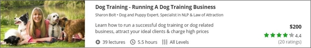 dog-training-running-a-dog-training-business