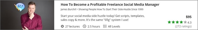 how-to-become-a-profitable-freelance-social-media-manager
