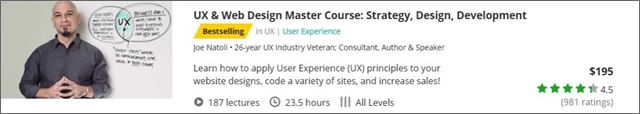 ux-web-design-master-course-strategy-design-development