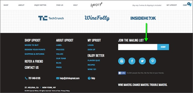 footer opt-in form