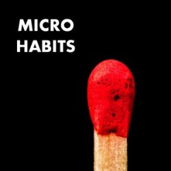 212: Micro Habits: The Too-Small-to-Fail Plan for Big Results