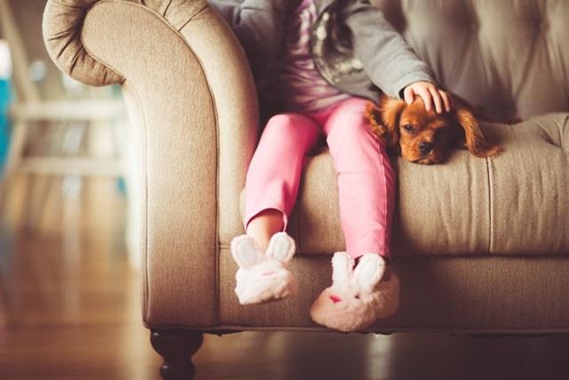 kids pet sitting business idea