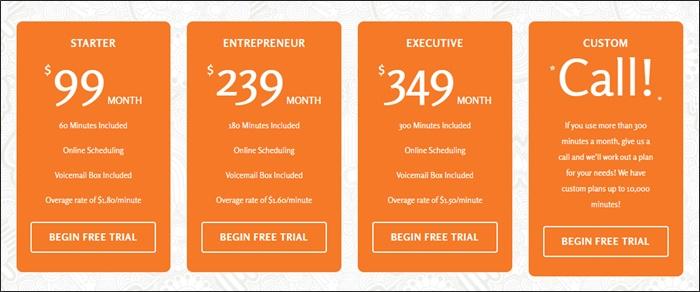 vicky virtual pricing