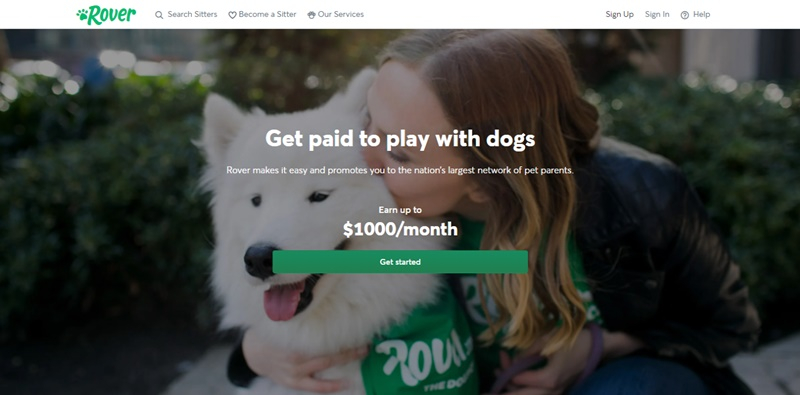 get paid to walk dogs