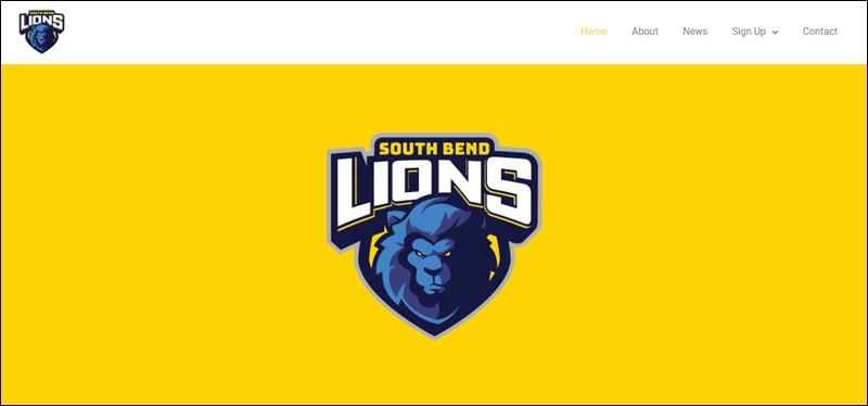 lions.gg domain flip